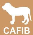 CAFIB - Clube de Aprimoramento do Fila Brasileiro